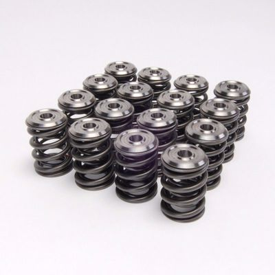 Picture of Skunk2 Alpha Series Valve Spring and Titanium Retainer Set K Series DOHC iVTEC