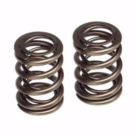 Picture for category K Series Valve Springs
